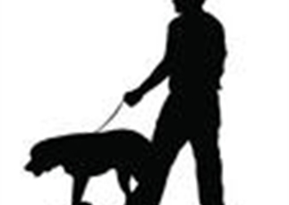 Have your say on Orders to promote responsible dog ownership